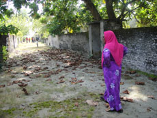 An islander re-visits her former home
