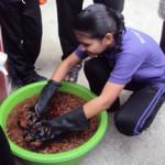 Addu students learning hydroponics