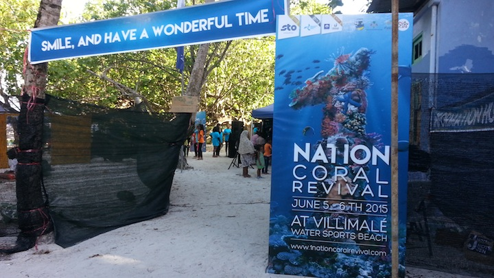 Environmentalists converge for '1 Nation Coral Revival' festival