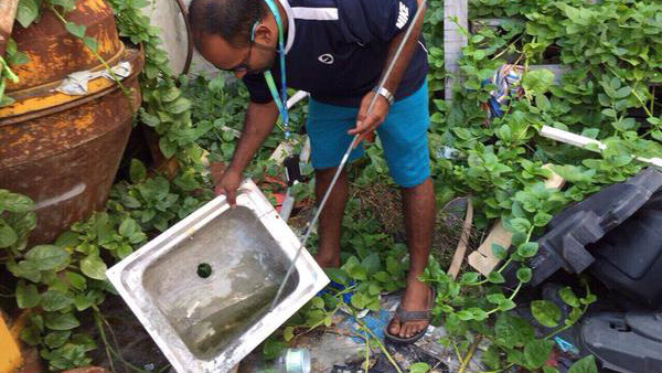Hundreds mobilized in campaign against dengue